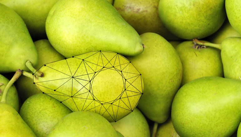 External quality detection in pears